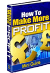 Mini Profit Guide